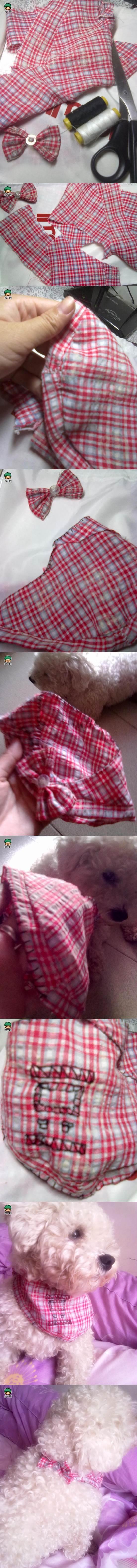 DIY Dog Clothes 2