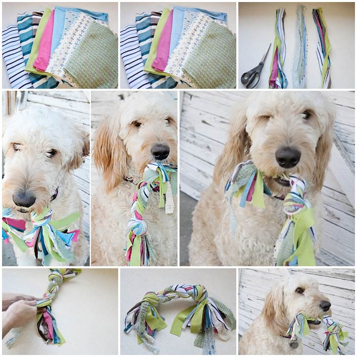DIY Jersey Knit Dog Toy 1