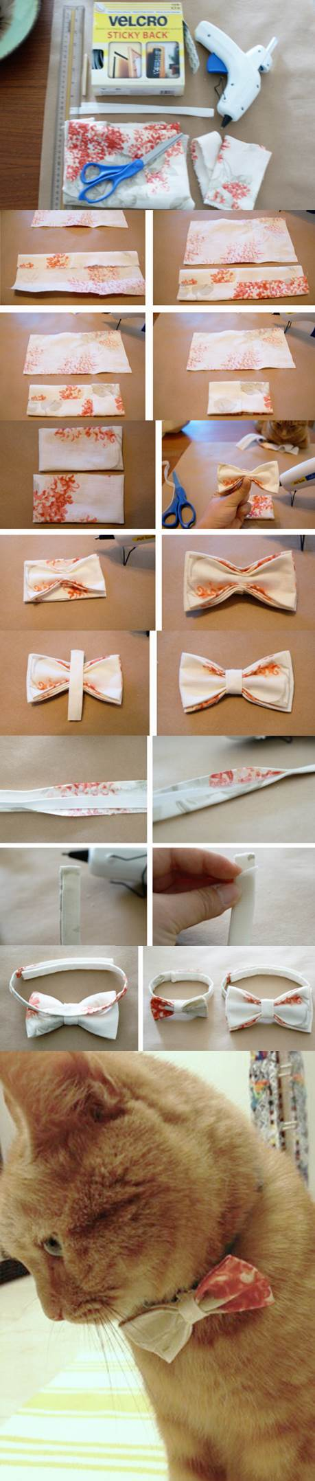 DIY No-Sew Bow Tie for Dogs and Cats 2