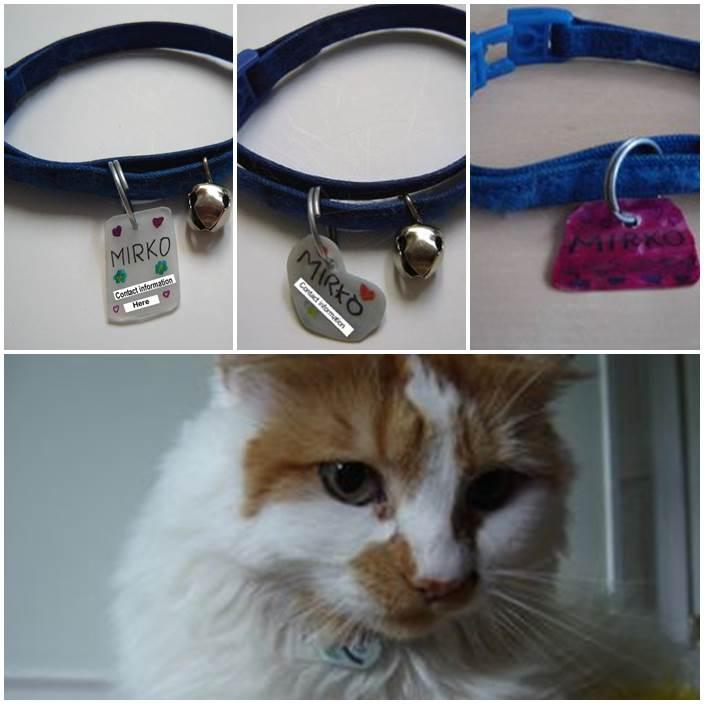 DIY Pet ID Tags 1