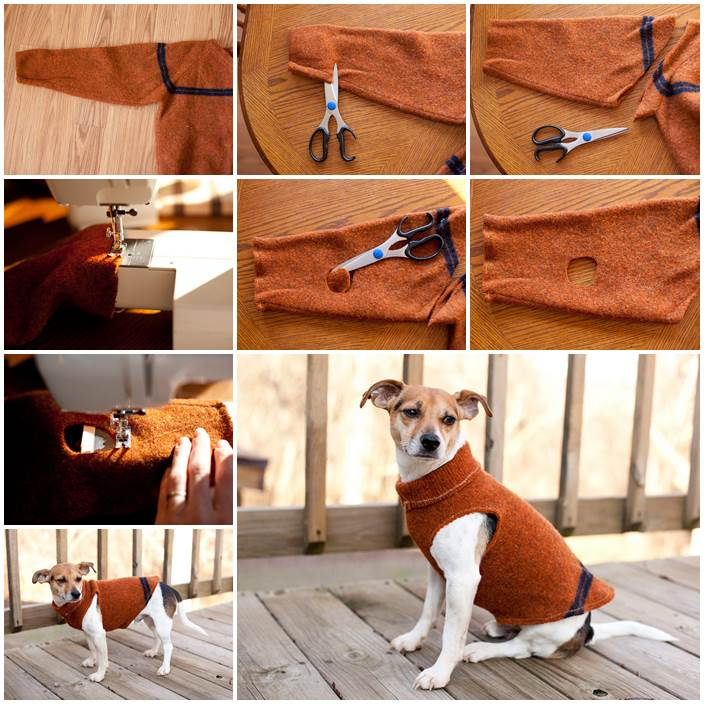 Diy Sweater Sleeve Dog Coat Lovepetsdiy Com