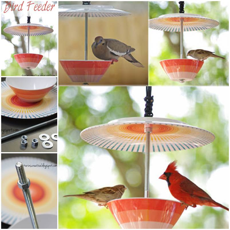 DIY Beautiful Bird Feeder 1