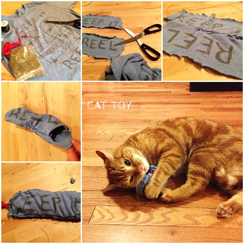 DIY Cat Toy with an Old T-shirt 1