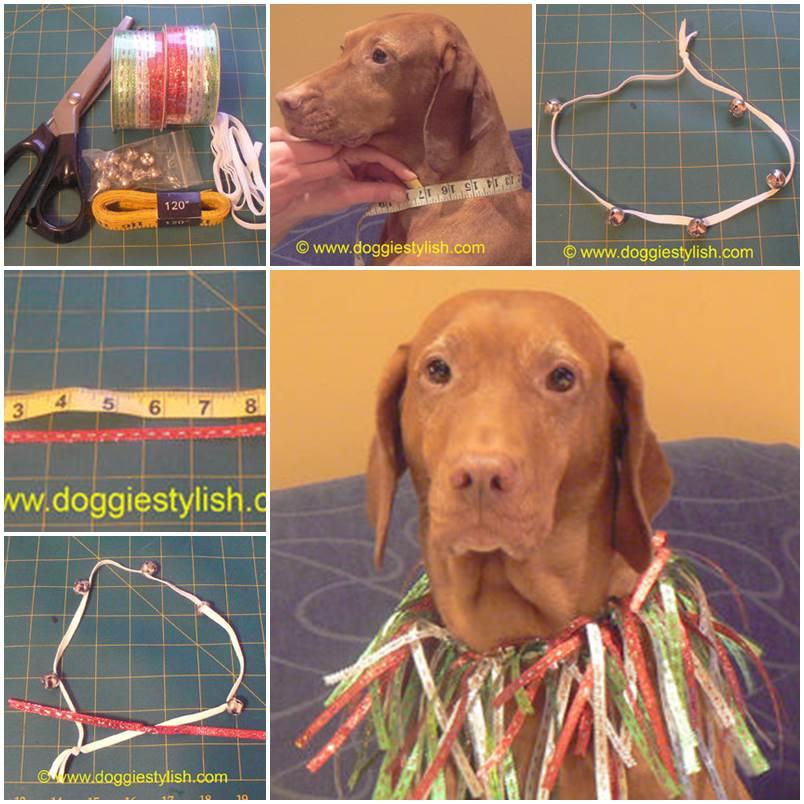 DIY Christmas Collar For Your Pet 1
