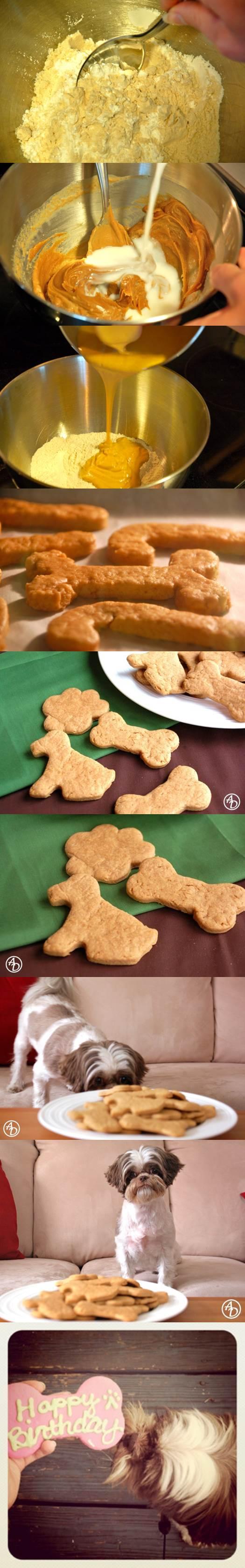 DIY Doggie Approved Peanut Butter Treats 2