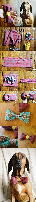 DIY Doggie Bow Tie 2