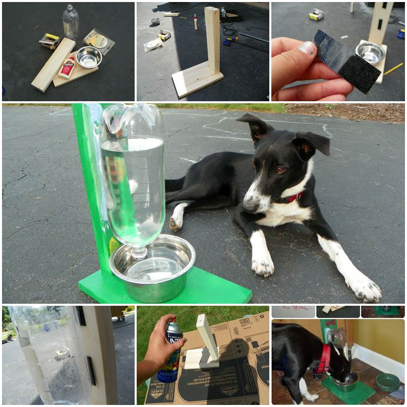 DIY Easy Water Bowl for Dogs and Cats 1
