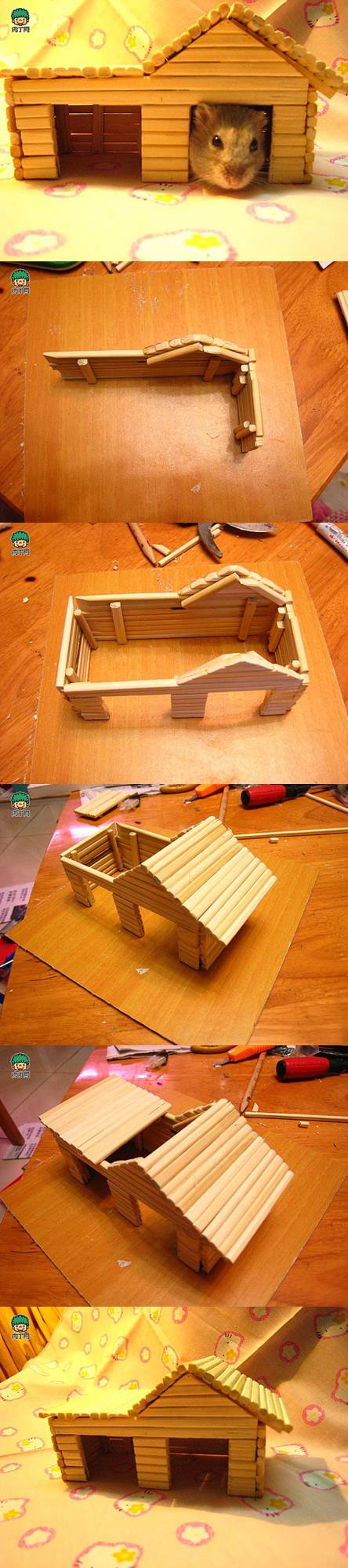 hamster house diy the image kid has it