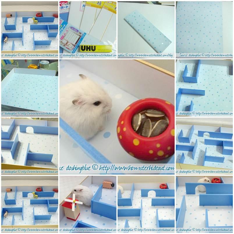 DIY Hamster Maze 1