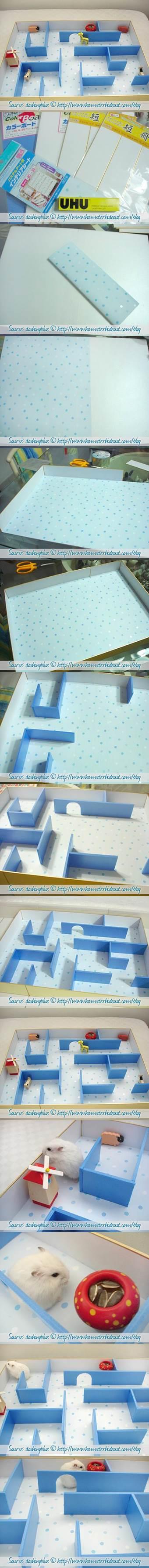 DIY Hamster Maze 2