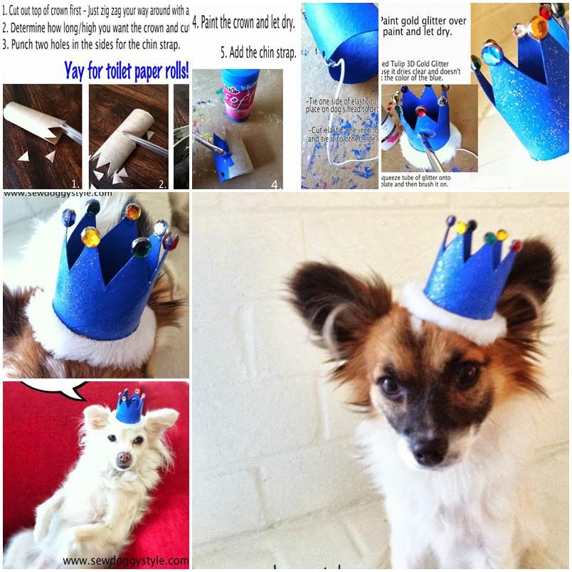 DIY Mini Dog Crown 1