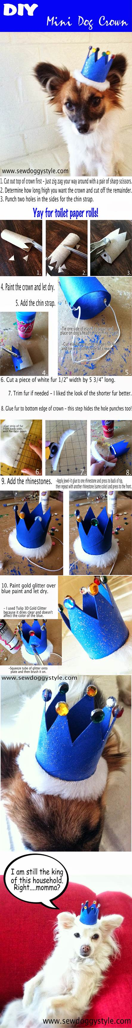 DIY Mini Dog Crown 2