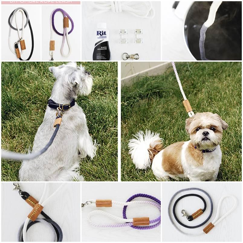 DIY Modern Dip-Dyed Rope Dog Leash 1