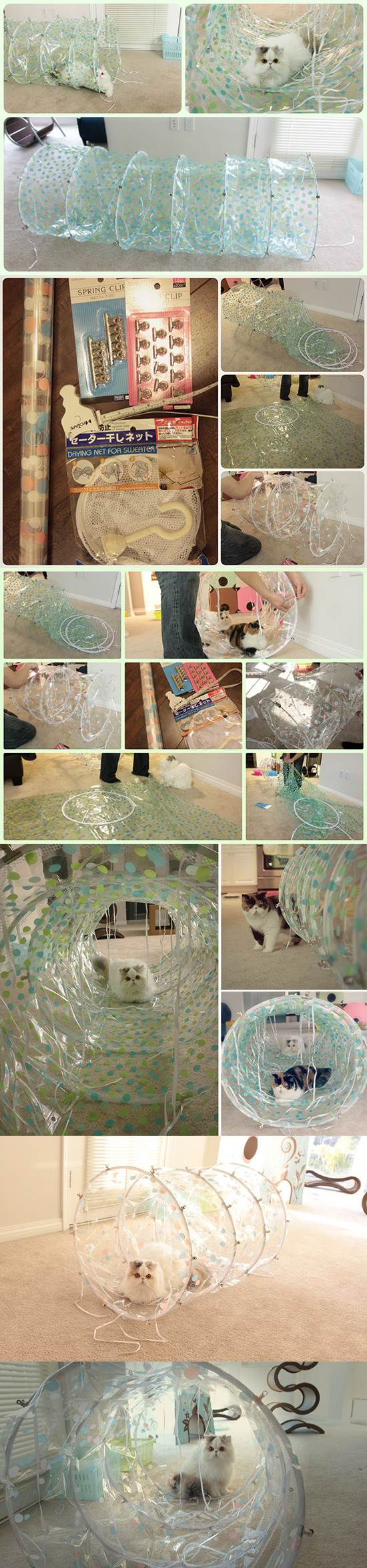 DIY Modern Transparent Cat Tunnel 2