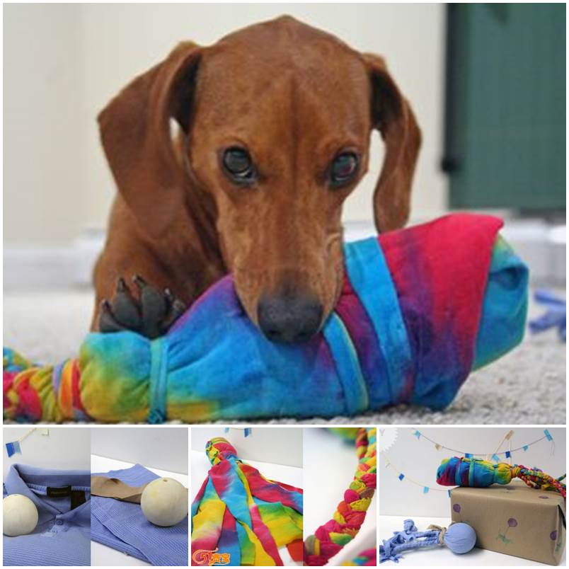 DIY Octopus Toys for Dogs 1