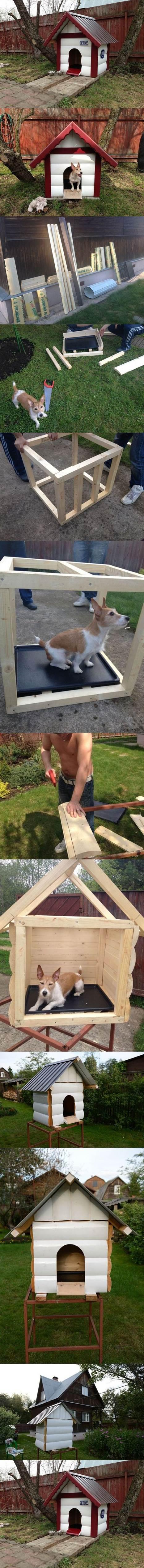 DIY Outdoor Dog House 2