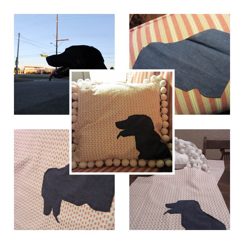 DIY Personalized Pillow for Pets 1