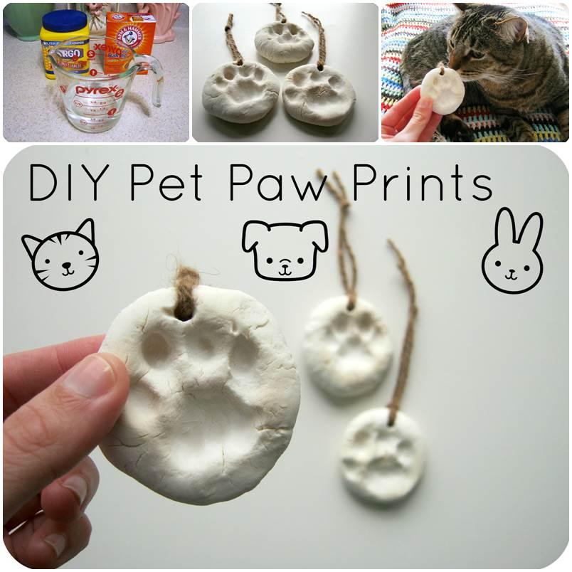 DIY Pet Paw Prints 1