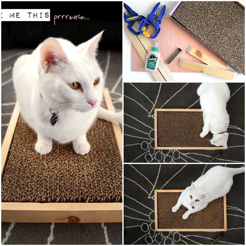 DIY Simple Cat Scratcher 1