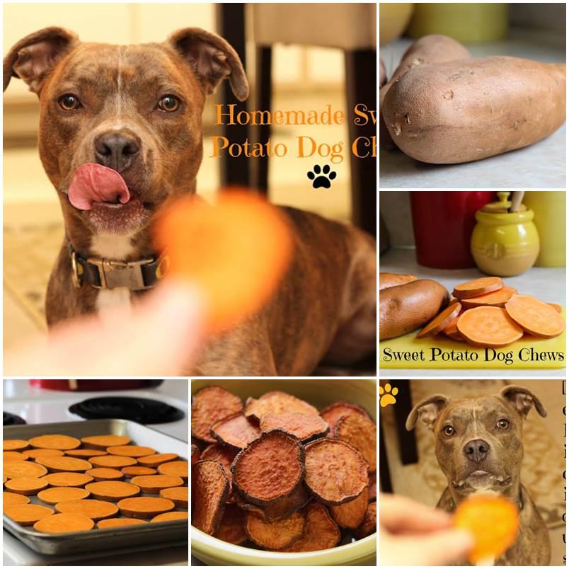 DIY Sweet Potato Dog Chews 1