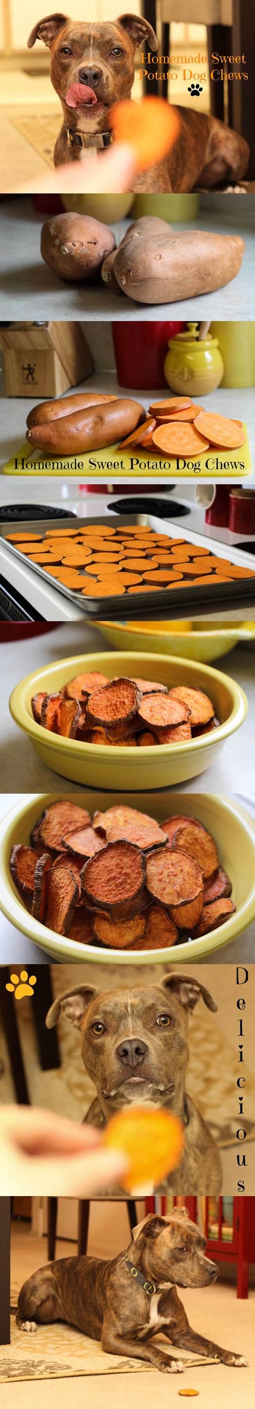 DIY Sweet Potato Dog Chews 2