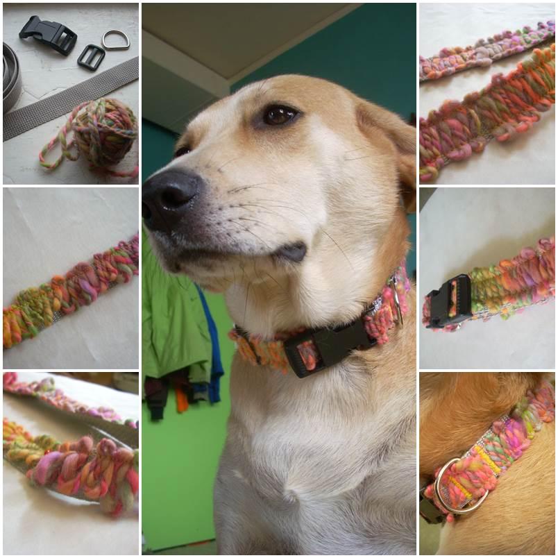 DIY Yarn Appliqued Dog Collar 1