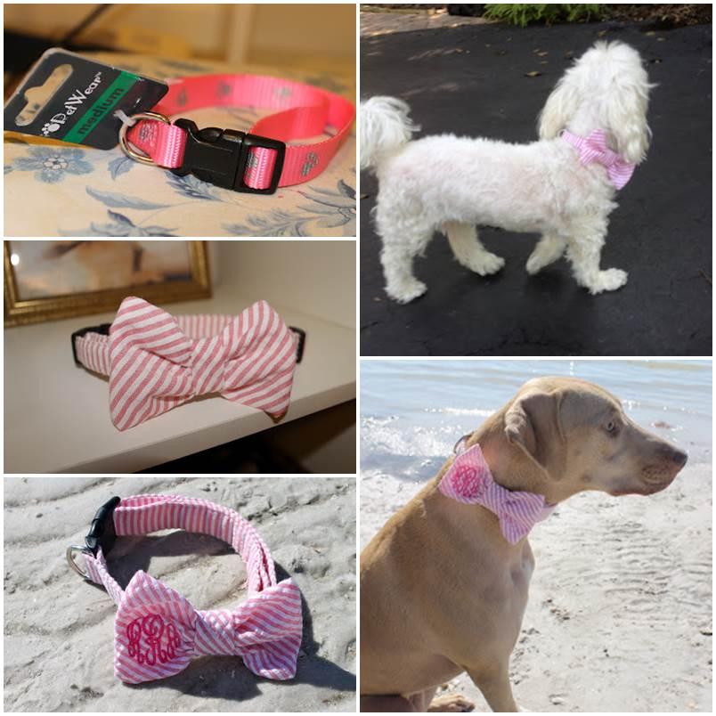 DIY Adorable Dog Collar 1
