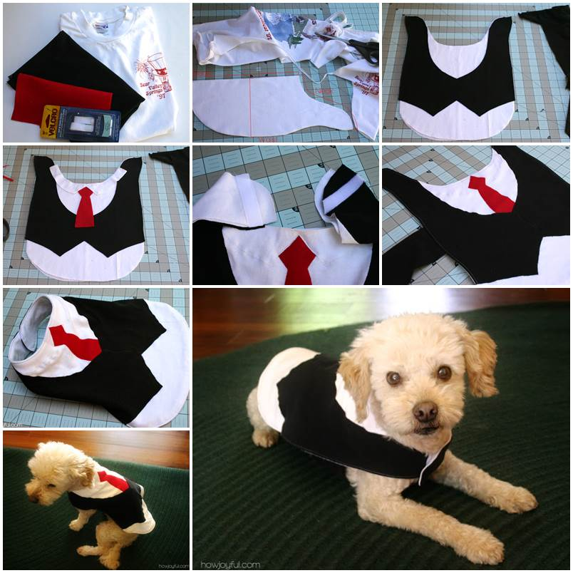 Diy Beautiful Doggie Tutu Lovepetsdiy Com