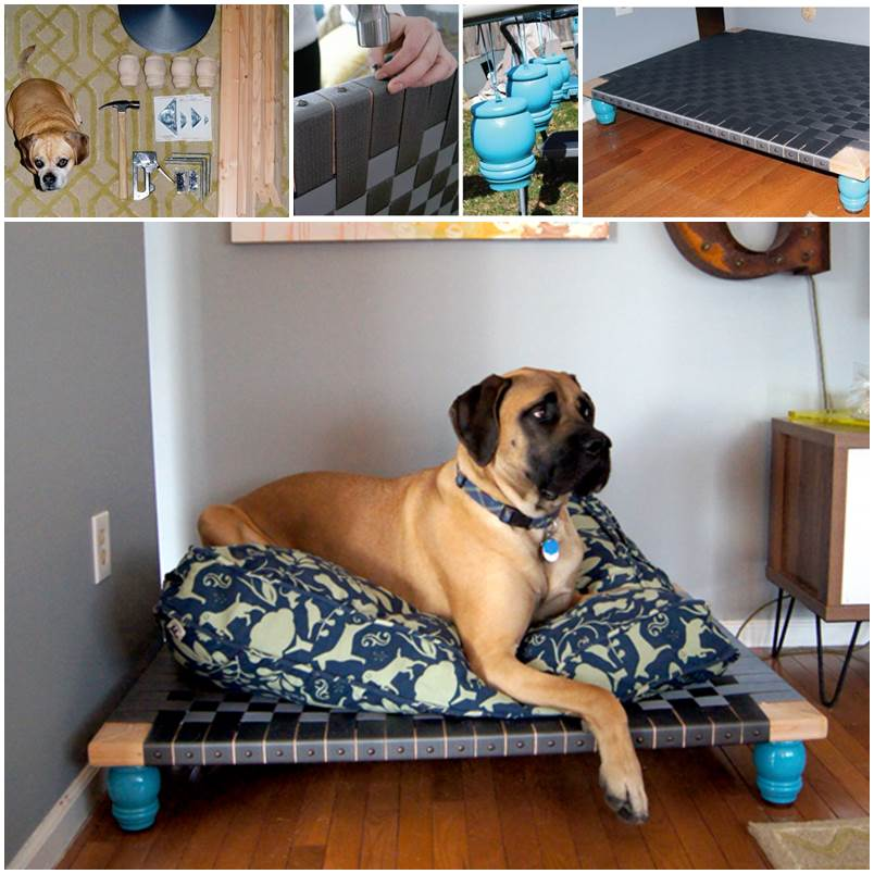 DIY Dog Bed for Big Dogs 1
