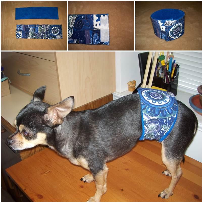 DIY Dog Belly Band 1