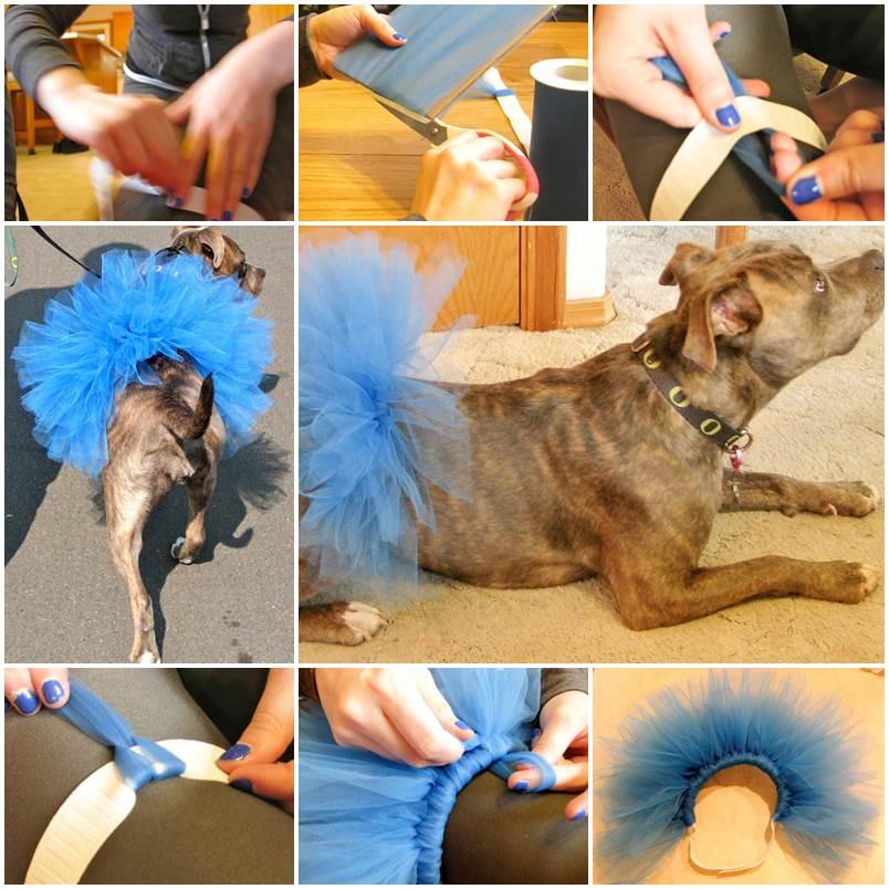 DIY Dog Tutu 1