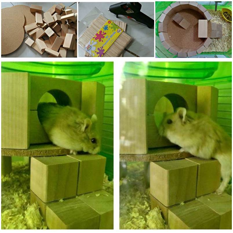 DIY Hamster Play House 1