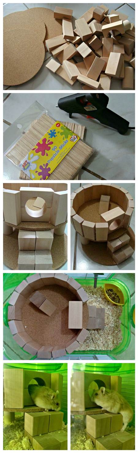 DIY Hamster Play House 2