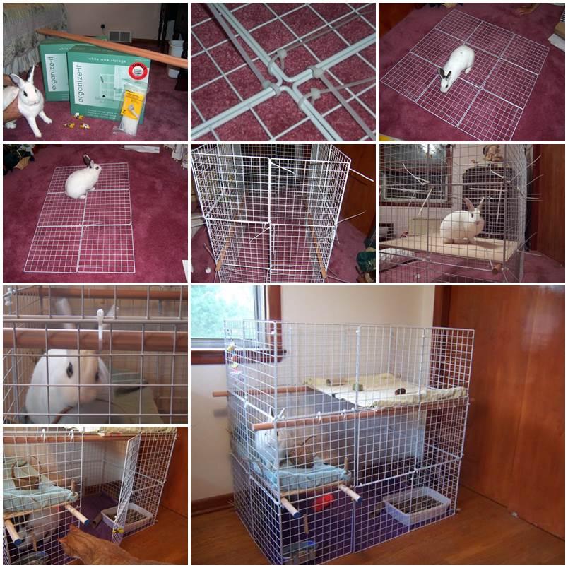 DIY Indoor 3-Level Rabbit Condo 1