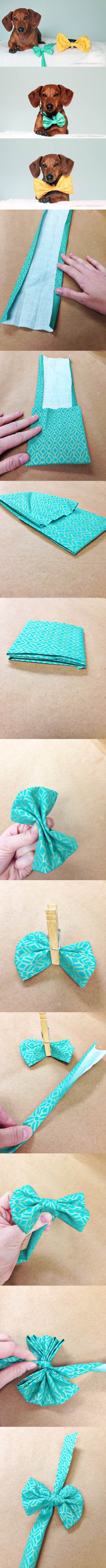 DIY No Sew Easter Bowtie for Dogs 2