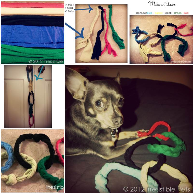 DIY Olympic Rings Dog Toy 1