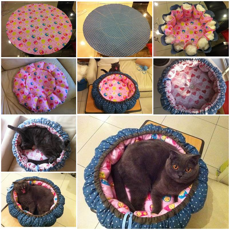 DIY Pumpkin Bed for Cats 1