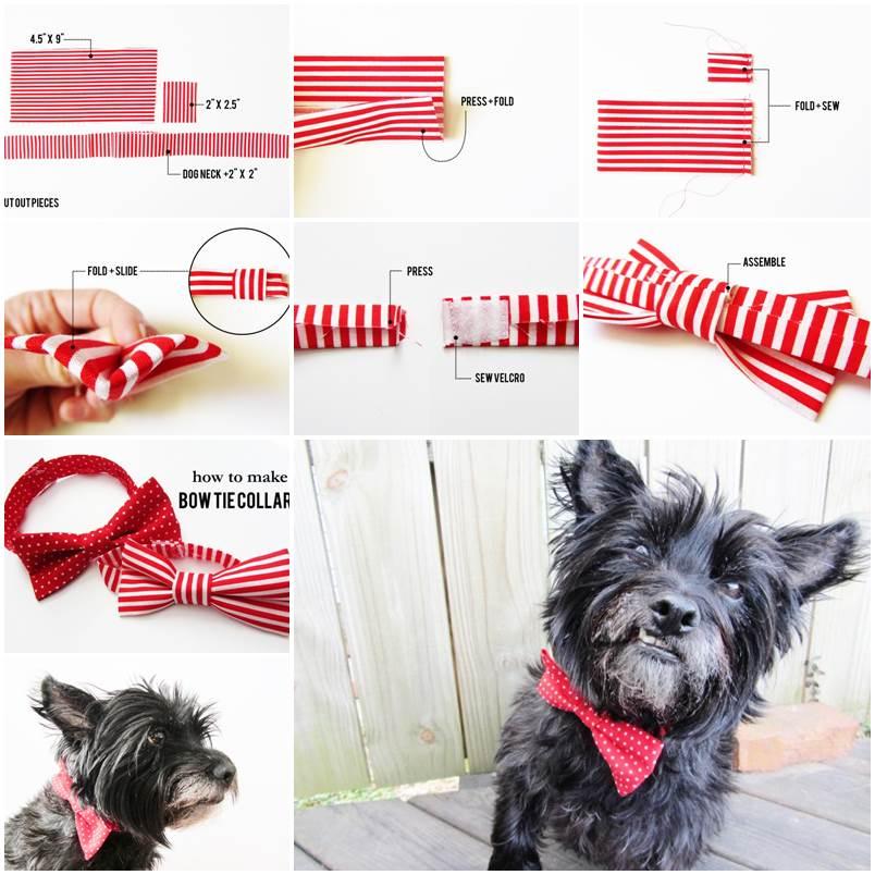 DIY Valentines Day Bow Tie Dog Collars 1