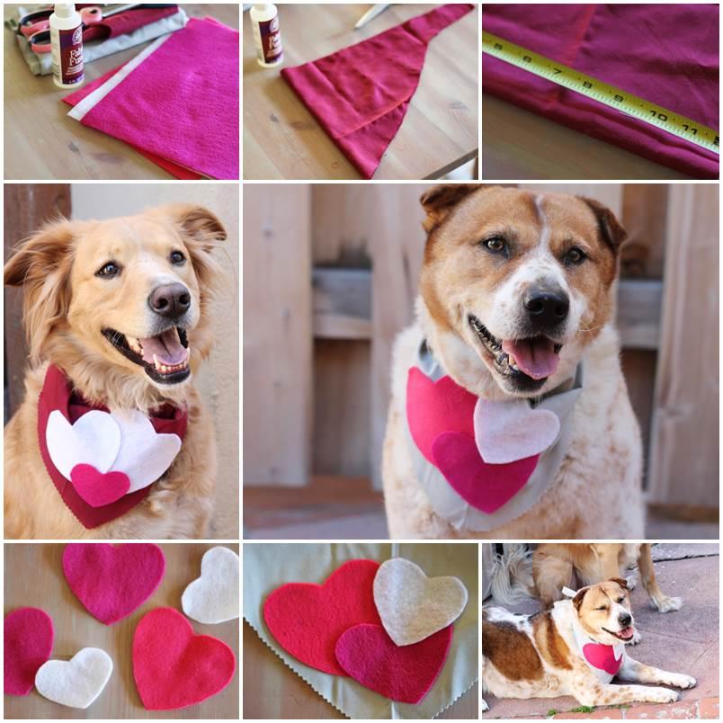 DIY Valentines Day Dog Scarf 1
