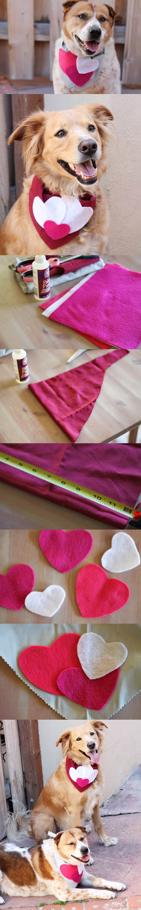 DIY Valentines Day Dog Scarf 2