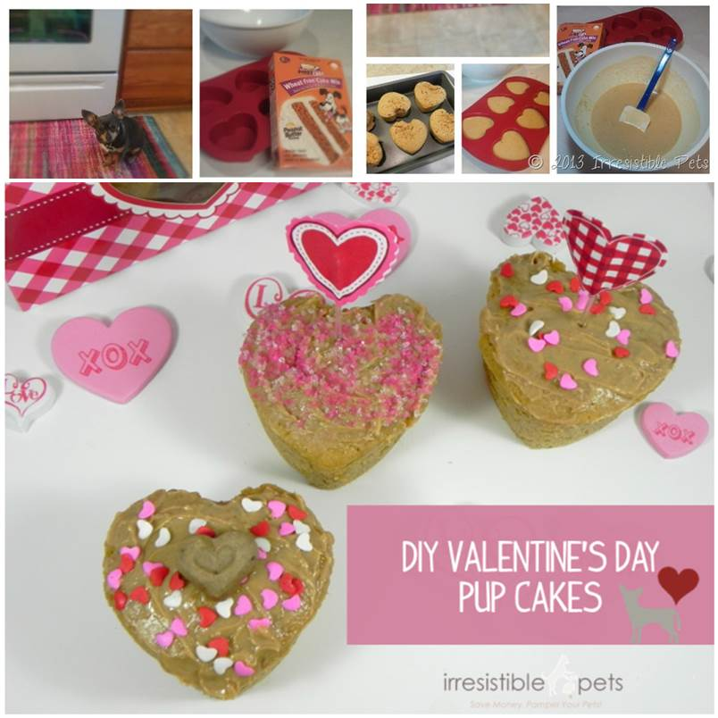 DIY Valentines Day Pup Cakes 1