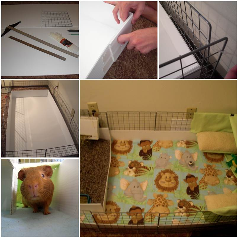 Diy bin cage for hamsters for Diy guinea pig cage from dresser
