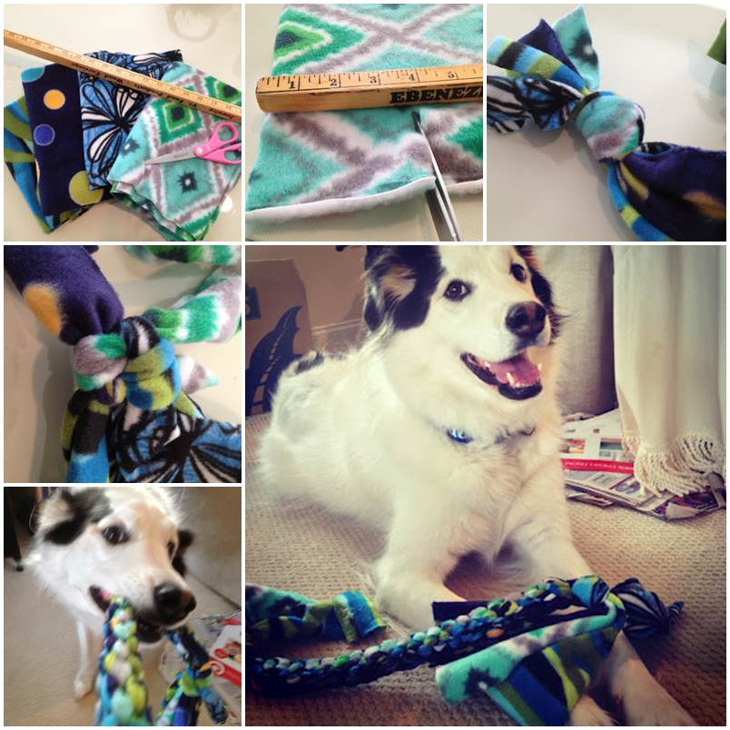 DIY Easy Box Braided Tug Toy for Dogs 1